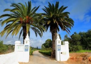 Casa Mestre Quinta da Saudade Villa Rental